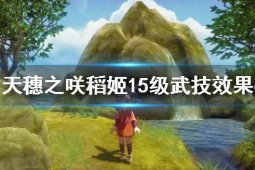 《天穗之咲稻姬》武器技能怎么选?15级武技效果及选择指南