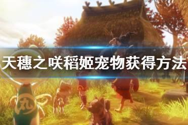 《天穗之咲稻姬》宠物怎么获得 宠物获得方法介绍