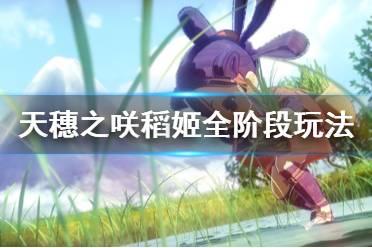 《天穗之咲稻姬》各阶段怎么玩 游戏全阶段玩法攻略
