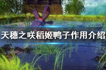 《天穗之咲稻姬》鸭子有什么用 鸭子作用介绍