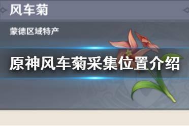 《原神》风车菊在哪里 风车菊采集位置介绍
