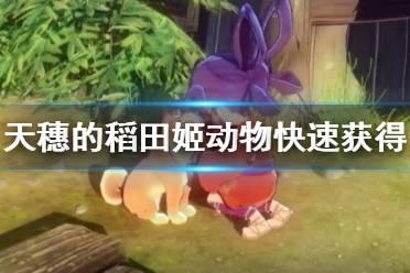 《天穗之咲稻姬》动物怎么获得?动物快速获得方法介绍
