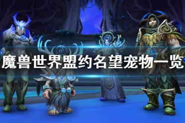 《魔兽世界》9.0盟约名望宠物有哪些 暗影国度盟约名望宠物一览