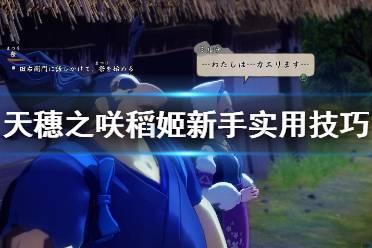 《天穗之咲稻姬》新手实用技巧汇总 新手要注意什么?