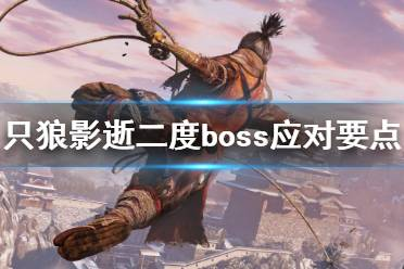 《只狼影逝二度》boss应对要点是什么 boss应对要点分享