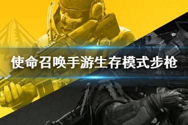 《使命召唤手游》生存模式步枪推荐 生存模式枪械怎么选