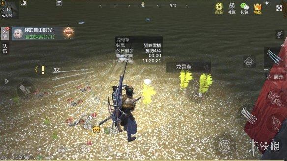 《妄想山海》龙骨草怎么采 龙骨草采集方法介绍