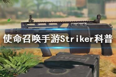《使命召唤手游》Striker是什么 Striker武器科普