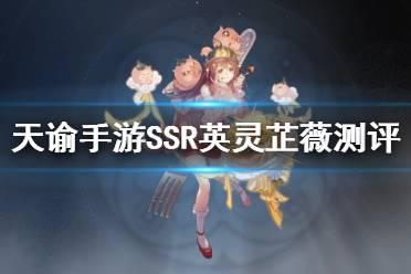 《天谕手游》芷薇强度分析 新SSR英灵芷薇怎么样