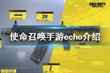 《使命召唤手游》echo怎么样 echo全面分析
