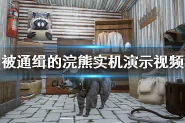 《被通缉的浣熊》画面怎么样 游戏实机演示视频