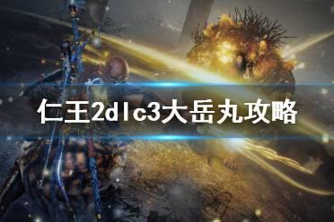 《仁王2》dlc3大岳丸怎么过?dlc3大岳丸攻略