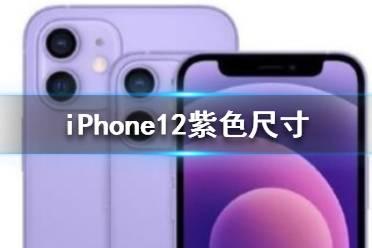 iphone12紫色多大尺寸 iPhone12紫色尺寸