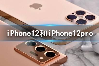 iPhone12和iPhone12pro区别有哪些 iPhone12和iPhone12pro对比