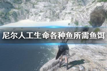 《尼尔人工生命升级版》各种鱼所需鱼饵及地点分布 钓鱼地点有哪些?