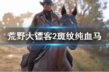 《荒野大镖客2》斑纹纯血马怎么刷 斑纹纯血马速刷心得