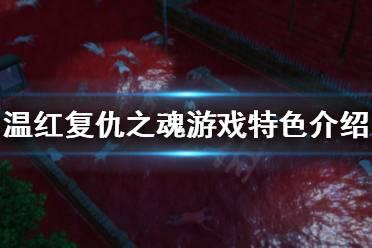 《温红复仇之魂》好玩吗?游戏特色介绍