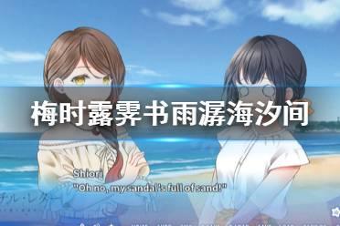 《梅时露霁书雨潺海汐间》好玩吗?游戏特色介绍