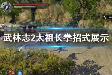 《武林志2》太祖长拳厉害吗?太祖长拳招式展示