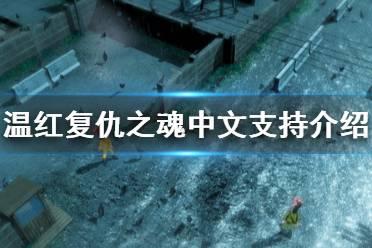 《温红复仇之魂》有中文吗?中文支持介绍