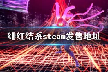 《绯红结系》上steam吗?steam发售地址