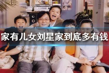 家有儿女刘星家到底多有钱 家有儿女刘星家到底多有钱是什么梗