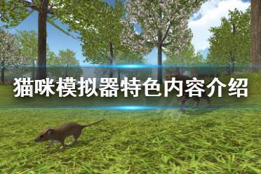 《猫咪模拟器农场动物》好玩吗?游戏特色内容介绍