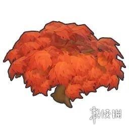《摩尔庄园手游》枫树多久成熟 枫树种子成熟时间