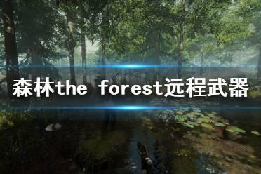 《森林》游戏远程武器怎么选?the forest远程武器排名一览