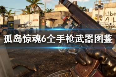 《孤岛惊魂6》手枪有哪些 全手枪武器图鉴介绍