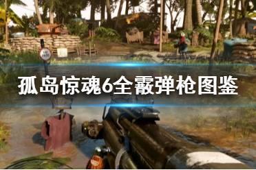 《孤岛惊魂6》喷子有哪些 全霰弹枪图鉴一览