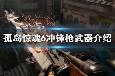 《孤岛惊魂6》冲锋枪武器介绍 全冲锋枪图鉴一览