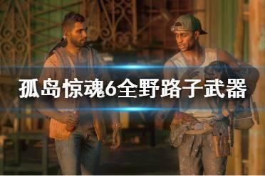 《孤岛惊魂6》野路子武器有哪些?全野路子武器一览
