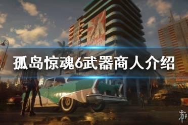 《孤岛惊魂6》武器商人在哪?武器商人介绍