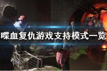 《喋血复仇》能本地双人吗?游戏支持模式一览