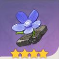 奇�E之花