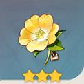 冒险家之花
