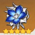 �o垢之花