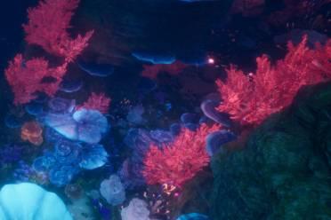 潜行海底《一梦江湖》全新海底地图惊艳曝光