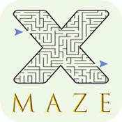 X Maze