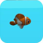 这条鱼的一生