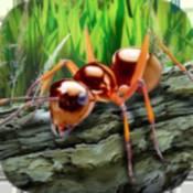 蚂蚁生存模拟器