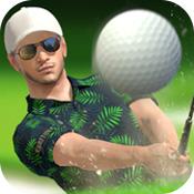 高尔夫之王世界巡回赛