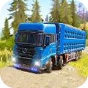欧洲货运卡车司机