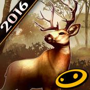 猎鹿人2016
